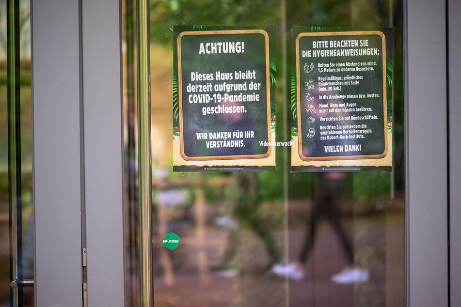 """Viele Besucher in Sachsen-Anhalts Zoos, aber... : """"Bezeichnen uns nicht als Gewinner"""""""
