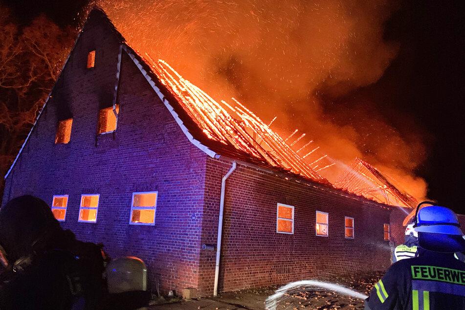 Kuhstall brennt aus: 44 Bullen und ein Esel sterben