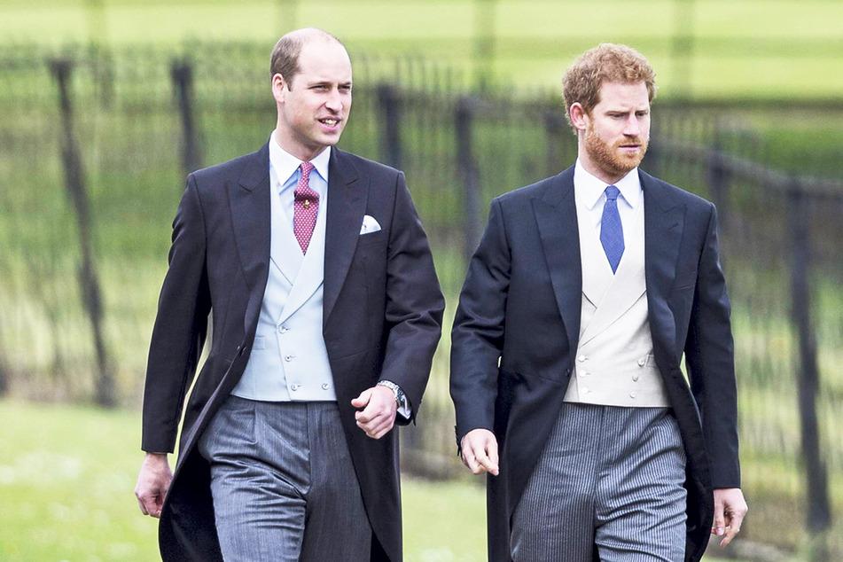 Prinz William (38, l.) und Prinz Harry (36) werden getrennt voneinander im Geleit gehen.