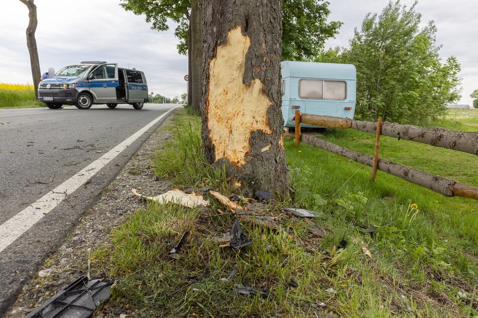 Gegen diesen Baum krachte eine Skoda-Fahrerin am Freitagmittag. Die Frau wurde schwer verletzt.