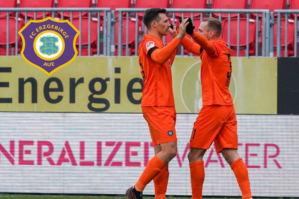 Auf zum SC Paderborn! Aue-Kicker Zolinski & Gonther wollen ihren Ex-Verein ärgern