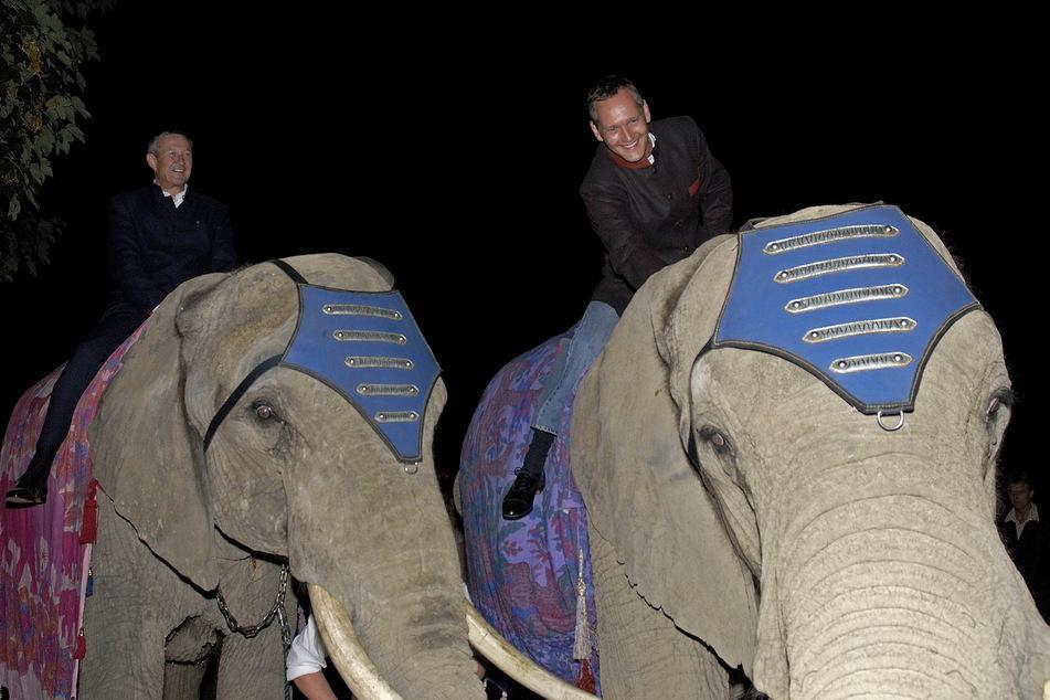 Zu ihrer Hochzeit 2006 ritten Stefan Heinemann (l.) und Jens Heinrich Zander auf zwei Elefanten zur Feier. 2011 trennte sich das Paar.