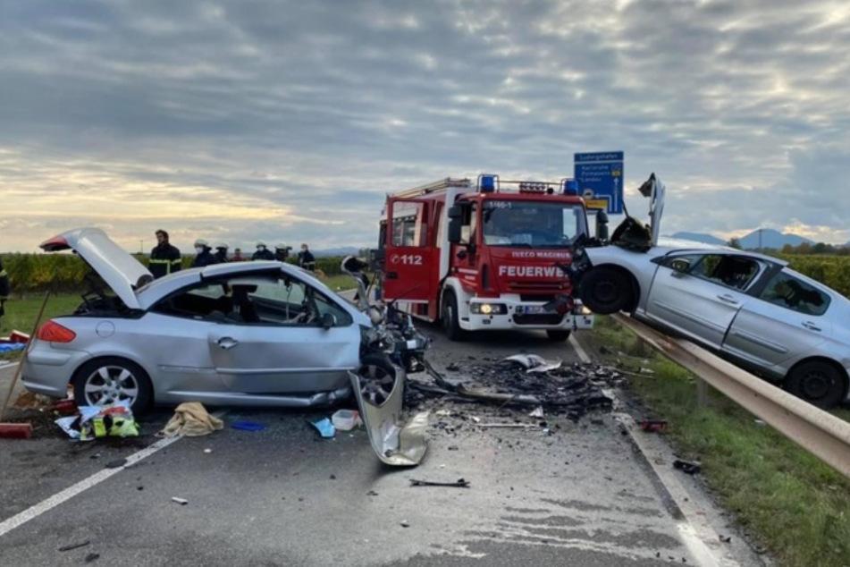 Tragischer Horror-Crash! Frau und Hund sterben