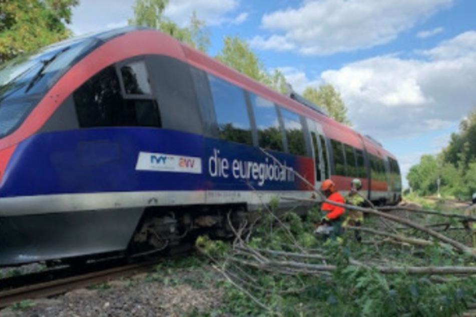 Zug fährt in umgestürzte Bäume bei Aachen