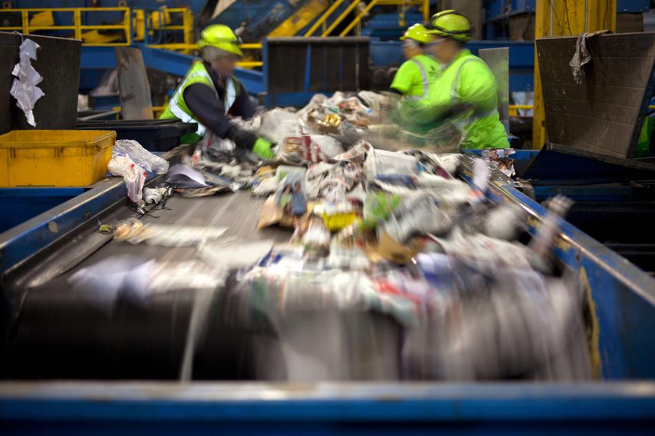 Müllmann macht Schreckensfund beim Sortieren von Abfall