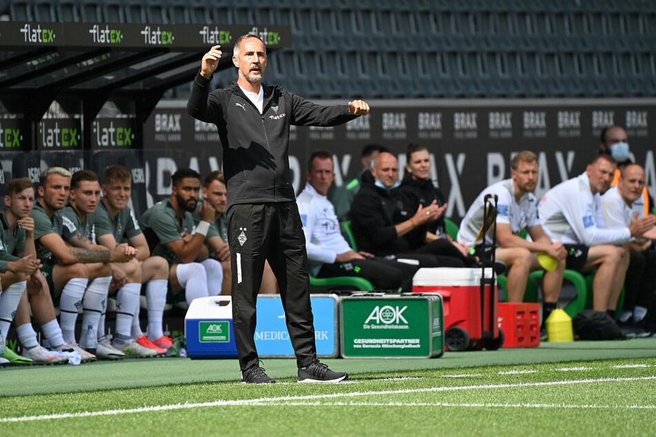 Lief noch nicht perfekt: An der Seitenlinie musste Fohlen-Trainer Adi Hütter (51, v.) allerhand dirigieren.
