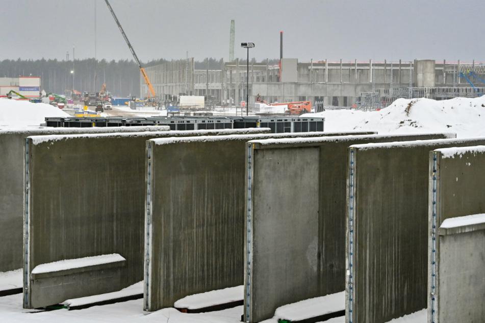 Giga-Factory in Brandenburg: Tesla entgeht Baustopp in letzter Minute!