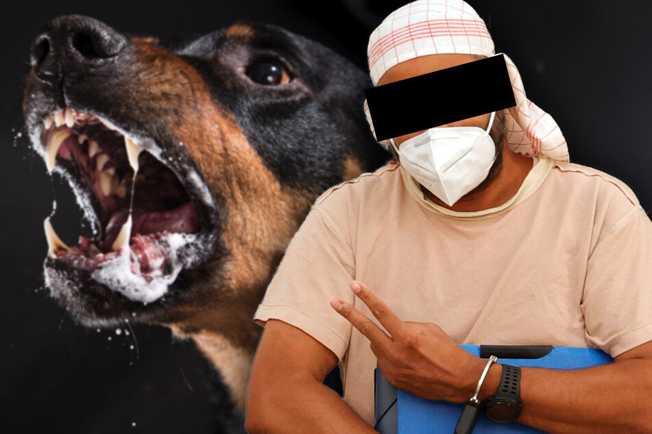 Kampfhund als Waffe? Chemnitzer soll Rottweiler auf Rivalen gehetzt haben