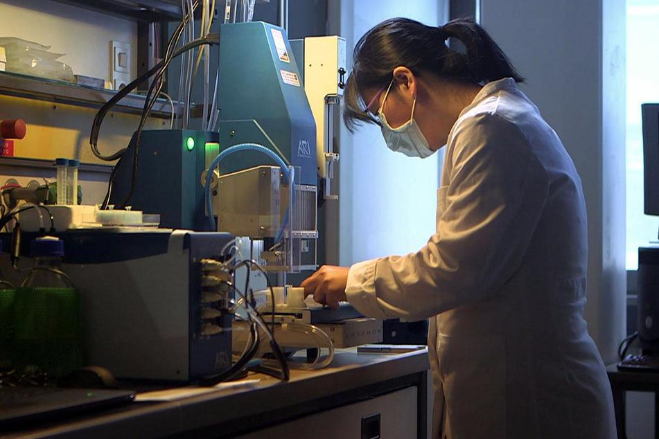 Forschungsarbeiten im Labor von Prof. Rolf Hilgenfeld.