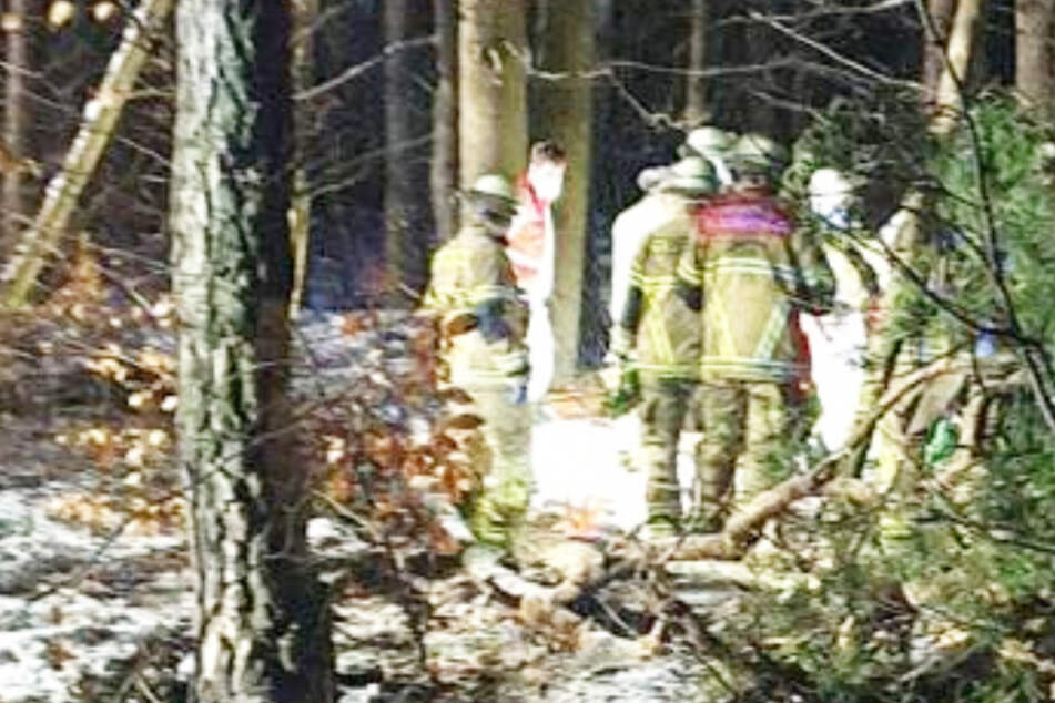 Tödlicher Unfall auf der A6: Auto überschlägt sich mehrfach und landet in Wald - Fahrer tot