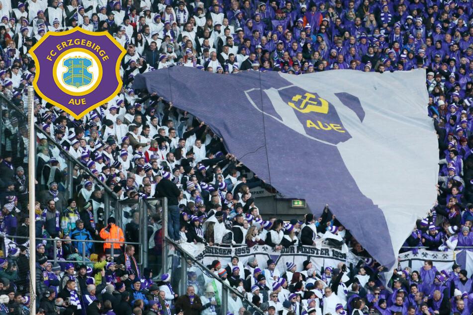 DFB-Pokal: Aue trifft auf Sieger des Württemberg-Pokals