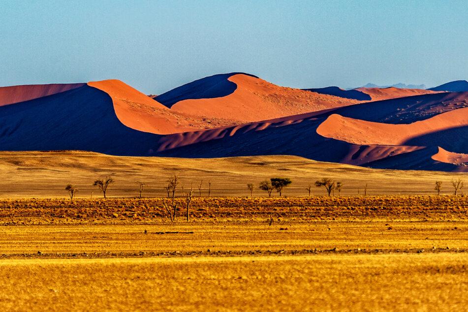 Tausende Herero verdursteten in der Wüste, die unter dem Befehl des Generalleutnants Lothar von Trotha abgeriegelt wurde.