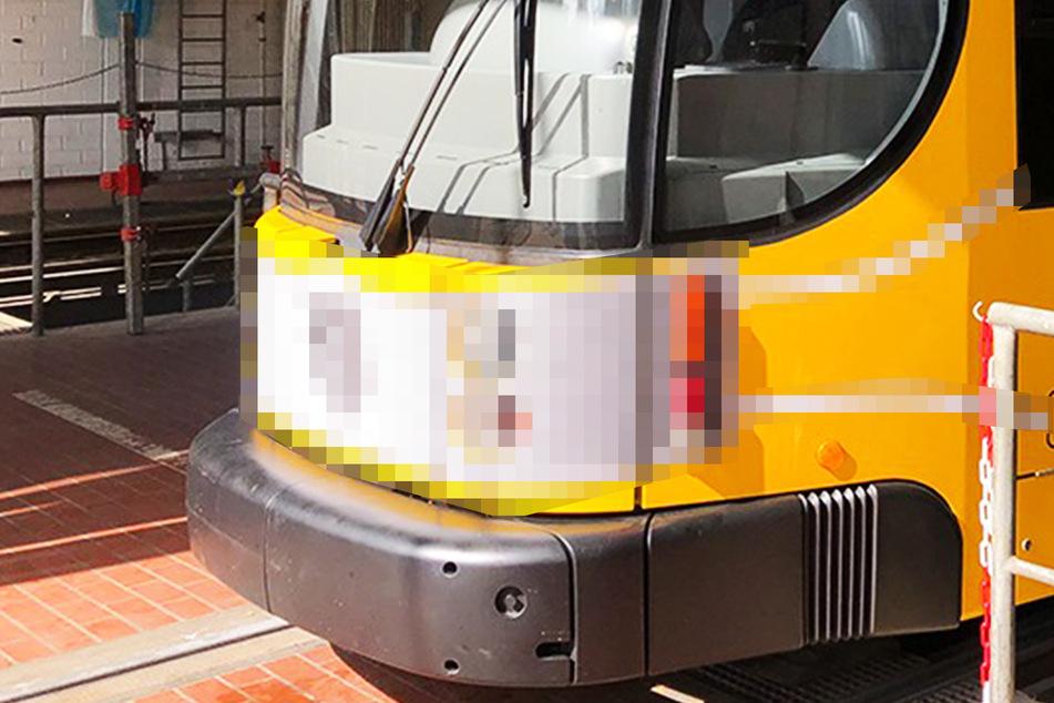 Wie sieht denn diese Dresdner Straßenbahn aus?