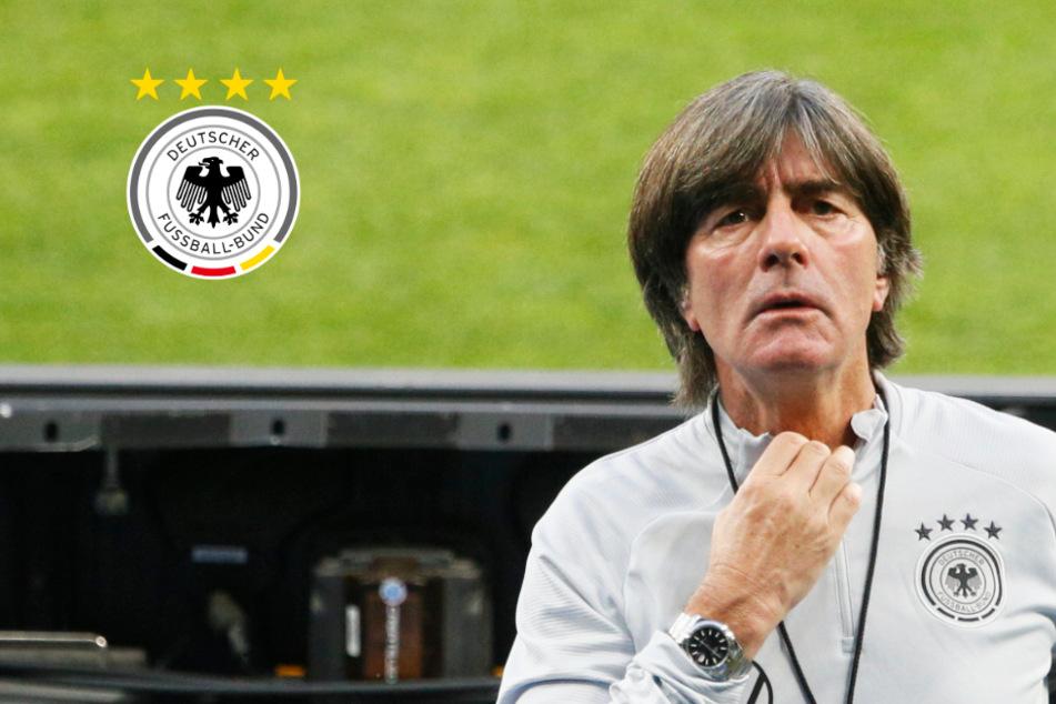 """DFB-Coach Löw vor Ukraine-Spiel über Kritik an seiner Person: """"Völlig egal!"""""""