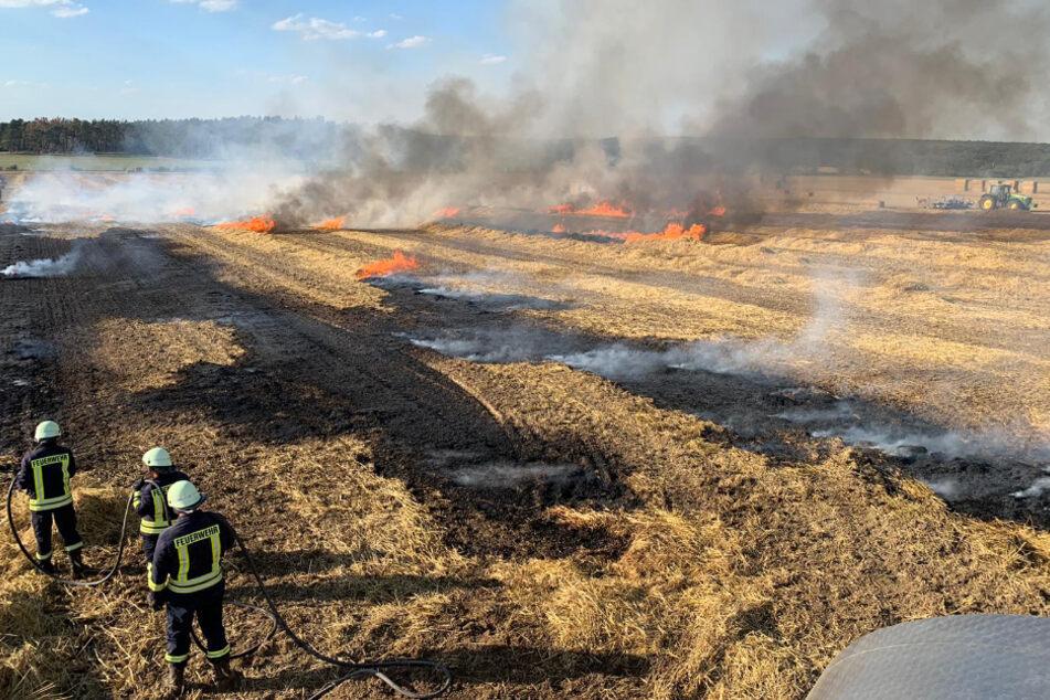Eine noch verheerendere Ausbreitung konnte durch die Feuerwehr verhindert werden.