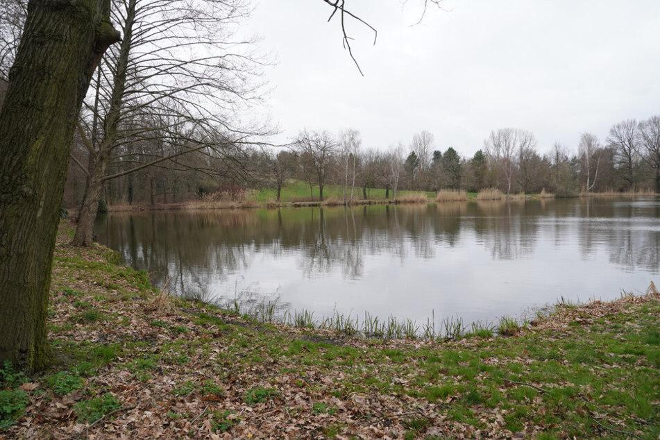 In diesem Teich endete die Fahrt für den gesuchten Mann (24).
