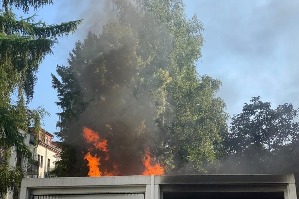 Flammen über einem Schuppen. Die Dresdner Feuerwehr musste schnell handeln.