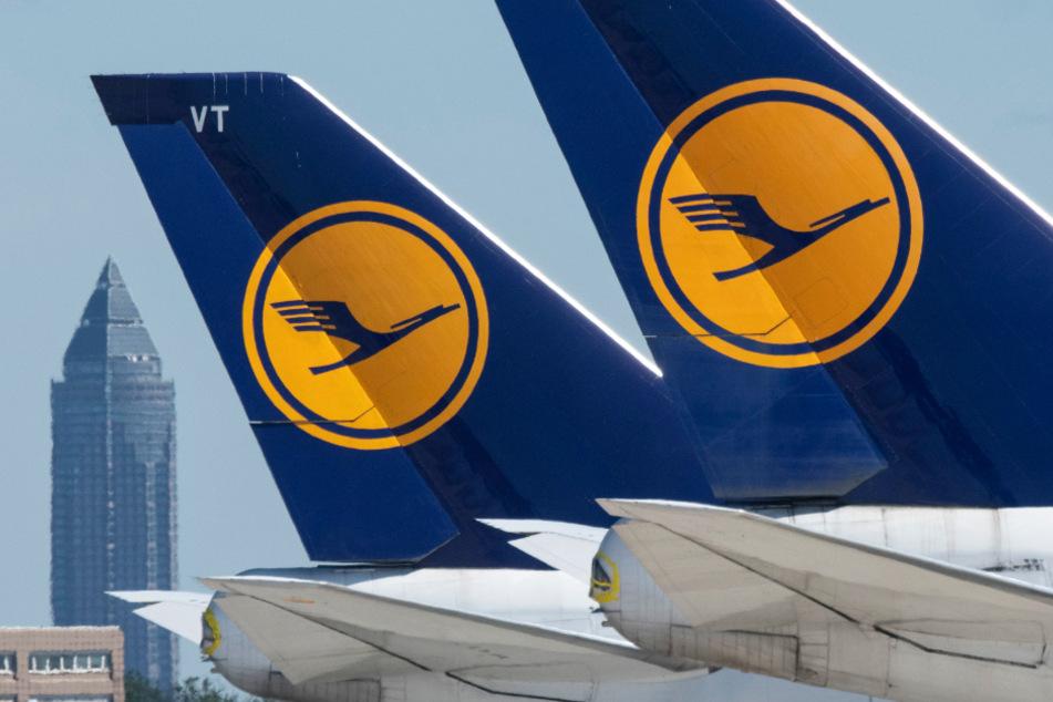Wegen der Corona-Krise stillgelegte Passagiermaschinen der Lufthansa stehen auf dem Vorfeld des Flughafen Frankfurt.