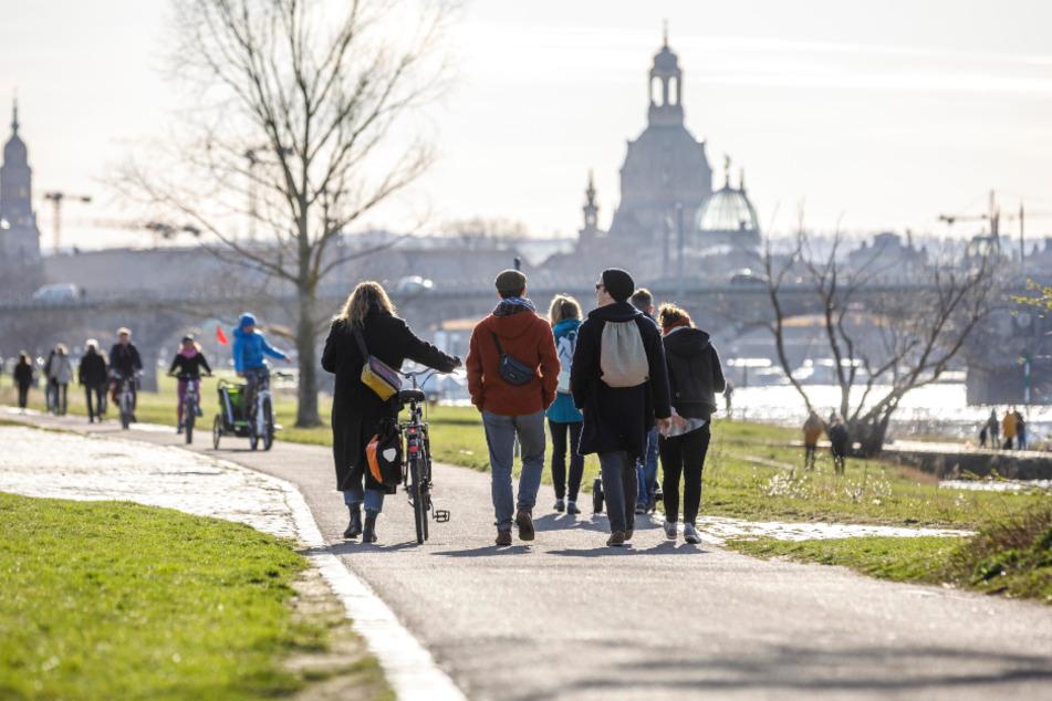 Weniger Touristen in Dresden: Dennoch genossen zahlreiche Passanten am Wochenende Sonnenschein und erste Frühlingsboten.