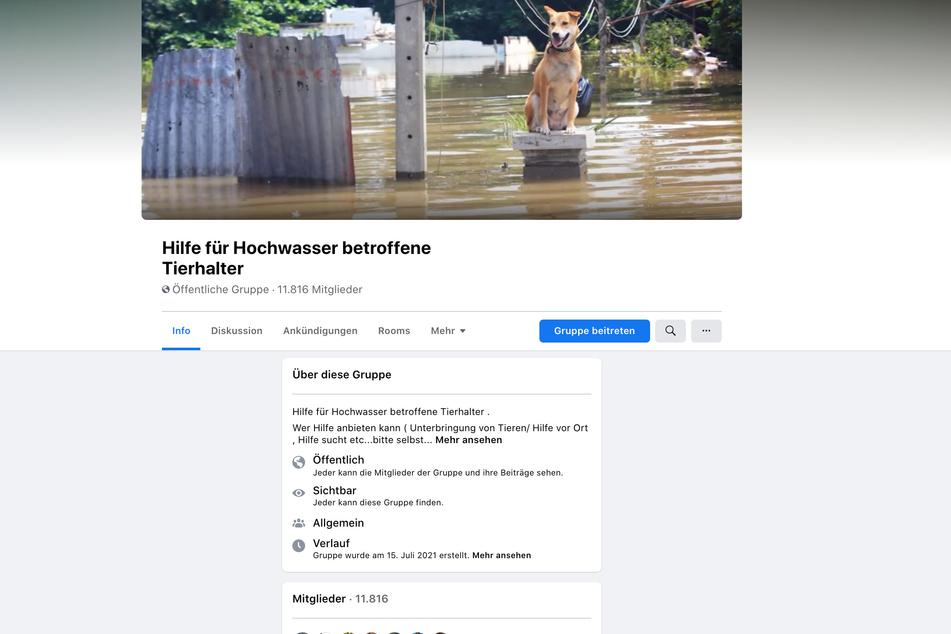 Auf Facebook wurde eine Seite für Hochwasser betroffene Tierhalter eingerichtet.