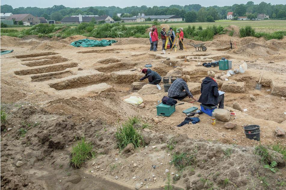 Bronzezeit-Skelette enthüllen: Wir stammen von einem Super-Papa ab!