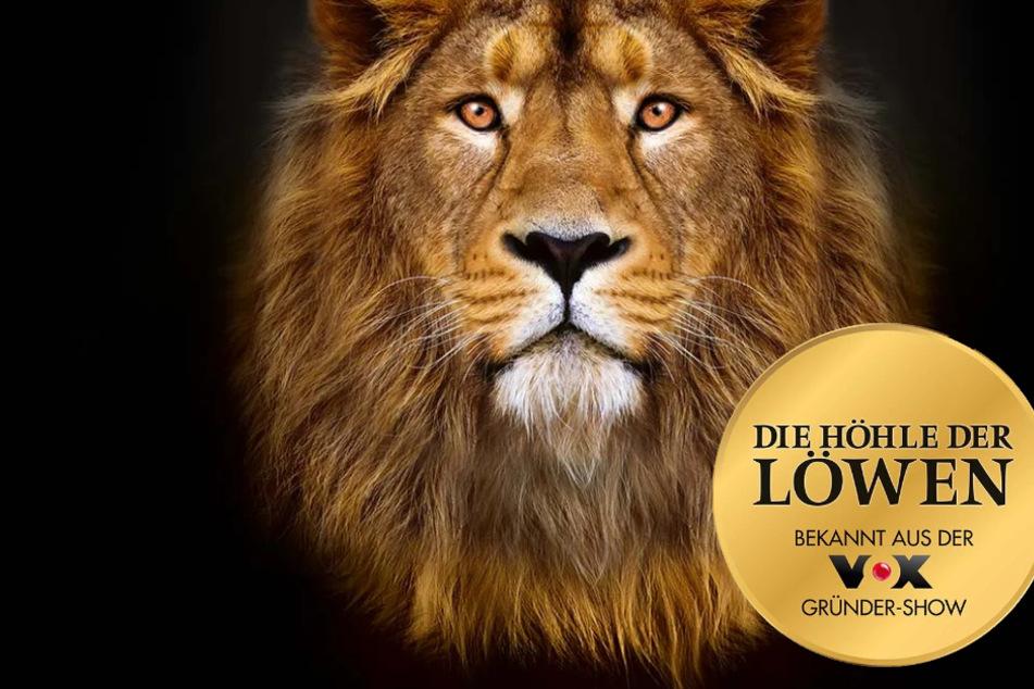 """Lidl verkauft diese Angebote aus """"Die Höhle der Löwen"""" bis 75 % billiger"""