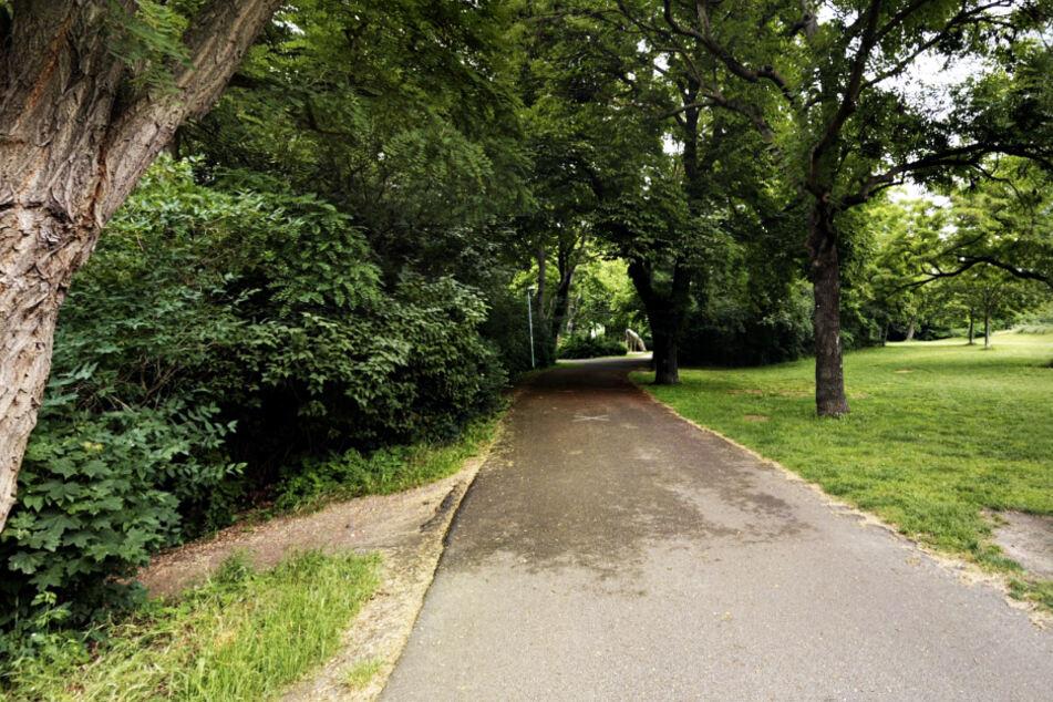 Im Glacis-Park ging die Männergruppe auf die beiden Passanten los.