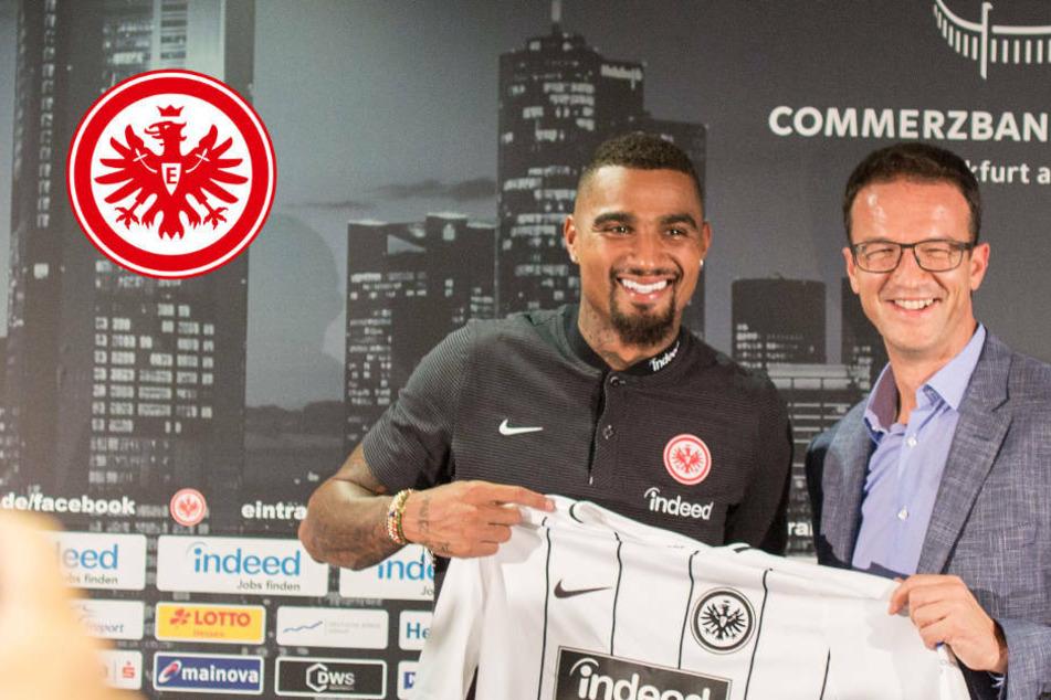 Emotionale Rückkehr: Eintracht Frankfurt empfängt Bobic und Boateng
