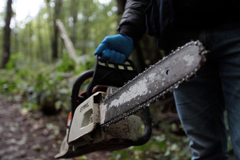 Mit einer Kettensäge wollte der 46-Jährige allein den Baum fällen.