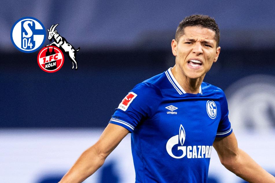 Schalke kassiert bitteren Nackenschlag: Last-Minute-Pleite gegen Köln!