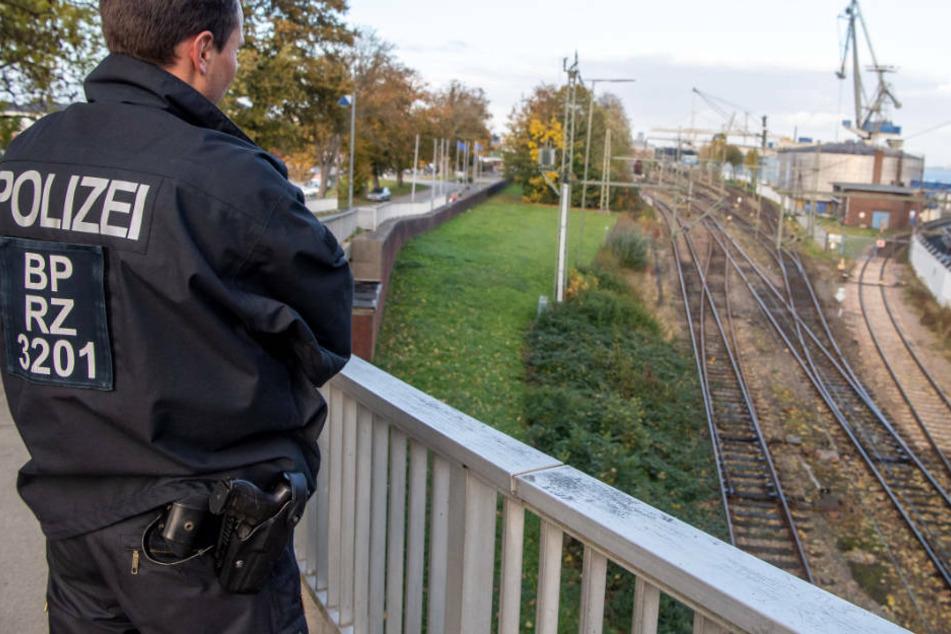 Atomkraftgegner erwarten Castor-Transport: Polizei plant Großeinsatz