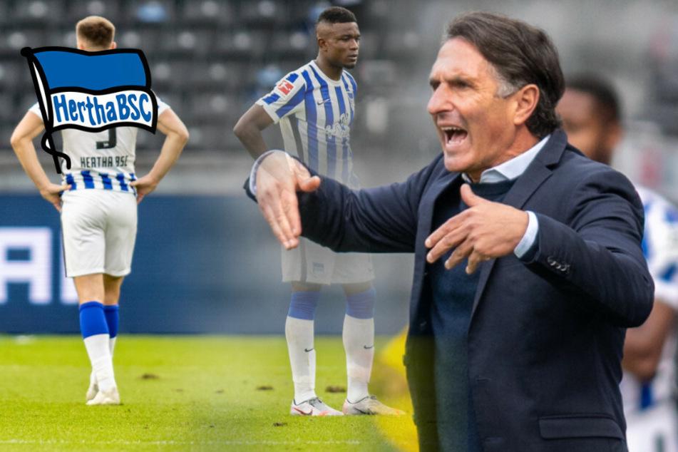 """Labbadia beklagt """"billige Niederlage"""": Und jetzt Hertha?"""