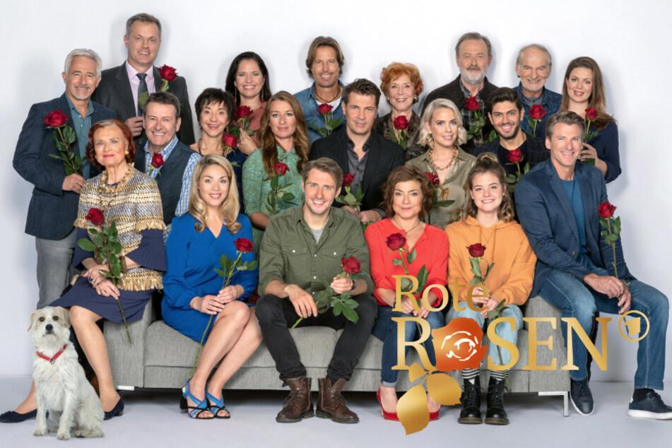 Rote Rosen aus dem Programm geworfen, wann geht es weiter?