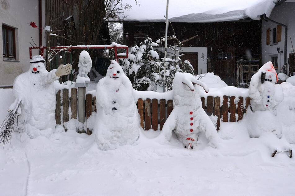 Das frostige Winterwunderland Bayern bleibt auch in den nächsten Tagen bestehen. (Archiv)