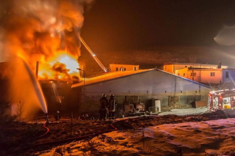 Feuer zerstört Lager einer Spielzeugfabrik