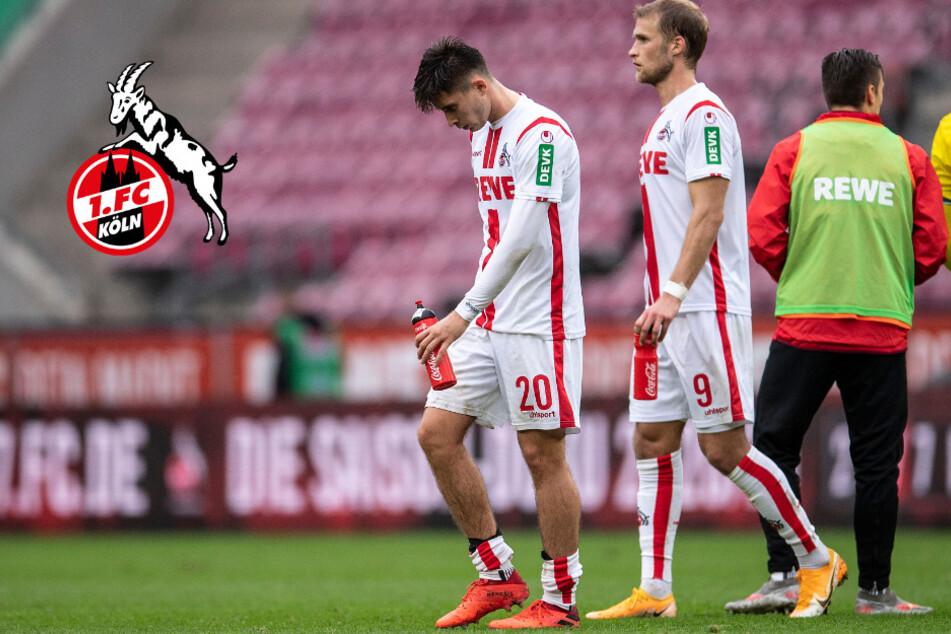 1. FC Köln nutzt Länderspiel-Pause für Testspiel