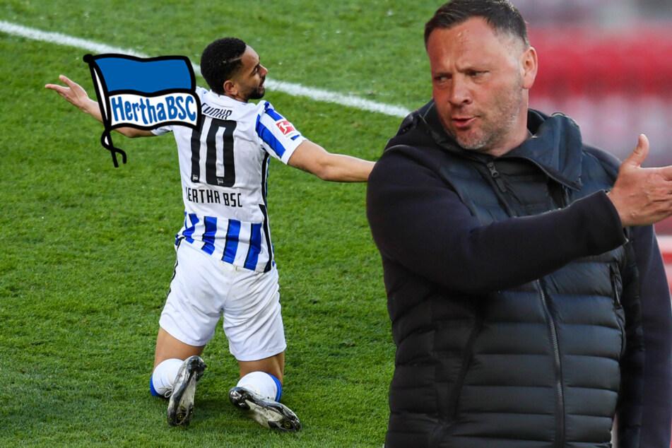 Reicht das? Hertha-Trainer Pal Dardai will noch 13 Punkte!