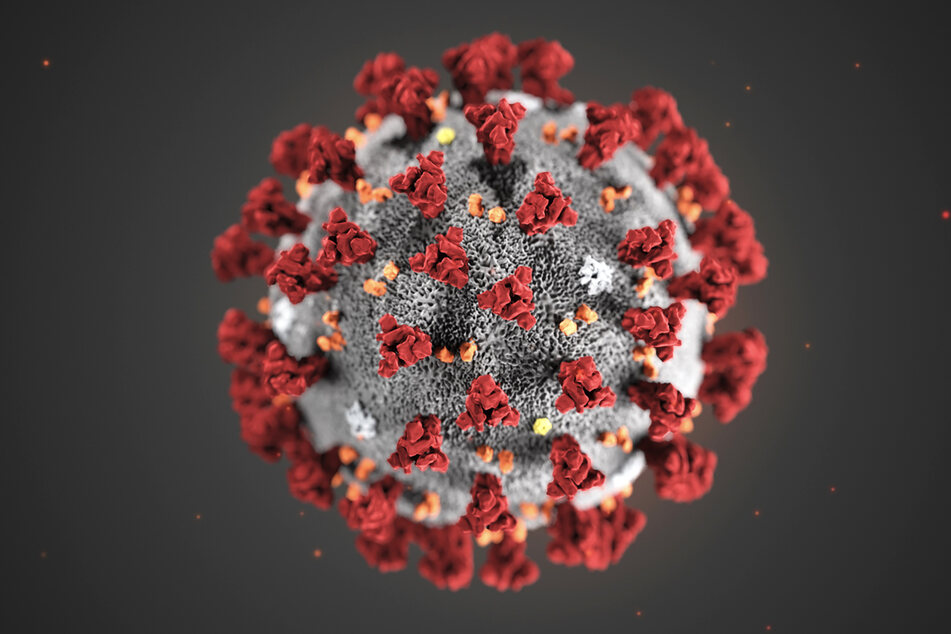 Eine Illustration des neuartigen Coronavirus.