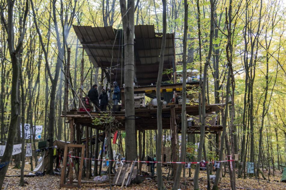 Umwelt-Aktivisten stehen in einem der Camps im Dannenröder Forst in einem Baumhaus.