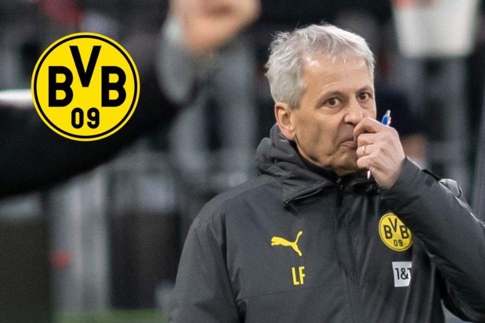 BVB-Beben bestätigt: Dortmund entlässt Coach Lucien Favre!