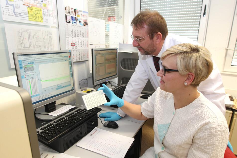 Labormediziner Michael Praus und Laborasisstentin Nicole Beulitz werten in Plauen die Ergebnisse von Corona-Tests aus.