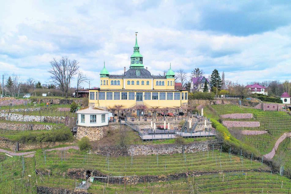"""Beliebt und geschätzt: das """"Spitzhaus"""" oberhalb der Radebeuler Weinhänge."""