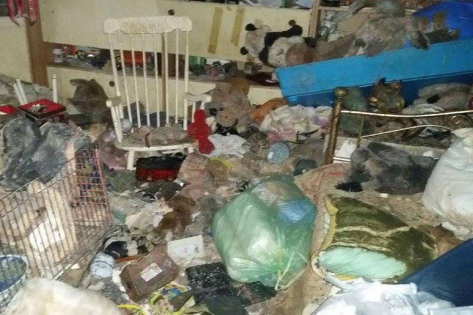 Tote Frau und unzählige Tierleichen in Messie-Haus entdeckt!