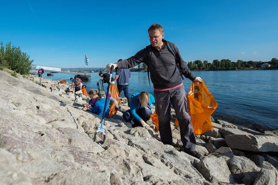 Ehrenamtliche sammeln bei der Umweltinitiative «Rhein Cleanup» am Rheinufer Müll.