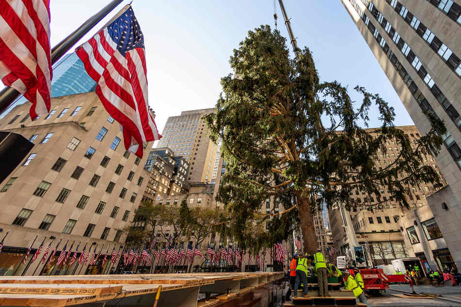 This year's Rockefeller Center Christmas tree sums up 2020 perfectly