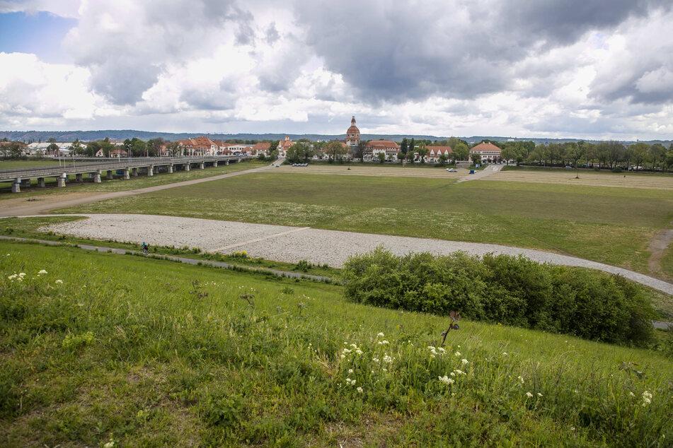 In die Flutrinne kommt Deutschlands größte Autokino-Leinwand