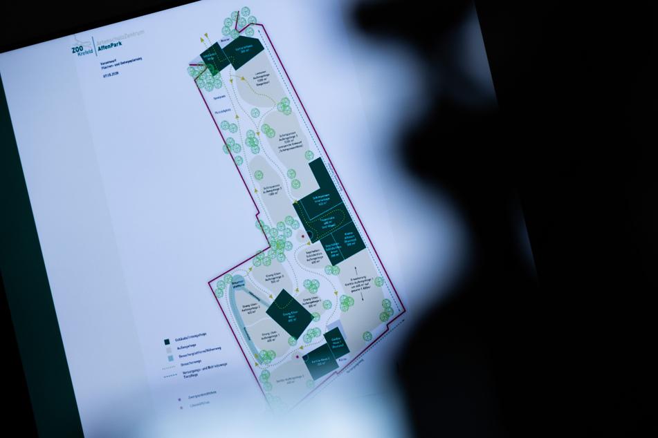 Eine erste Vorplanung für den neuen Affenpark wird auf einer Pressekonferenz im Rathaus vorgestellt.