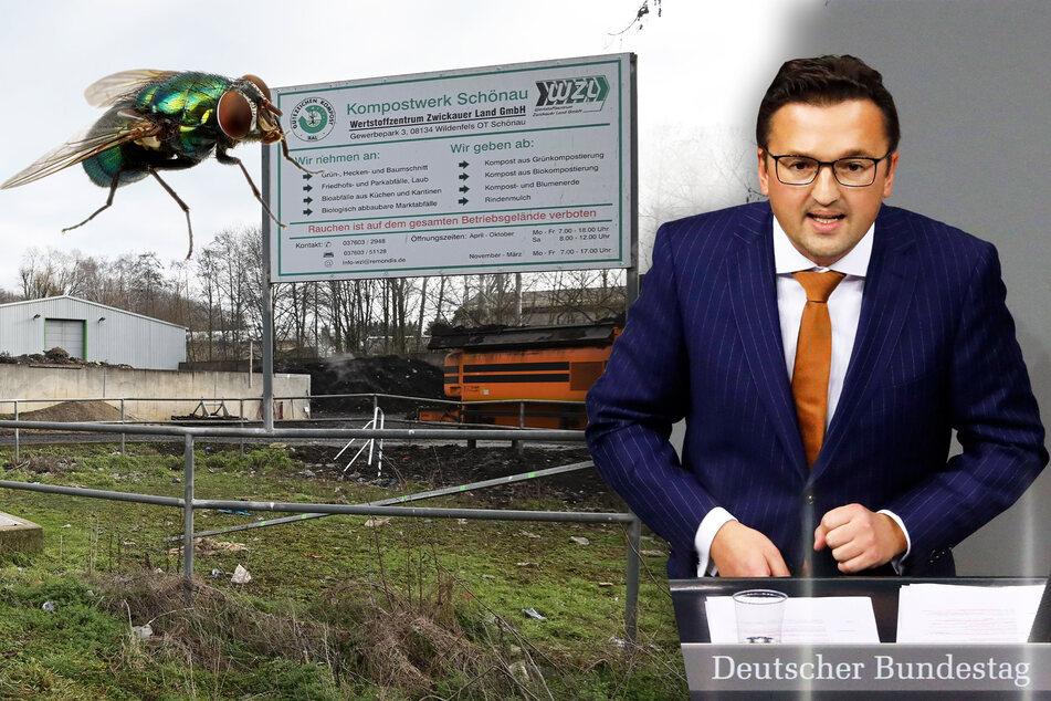 Bund soll Fliegenplage in sächsischer Stadt stoppen: Hilfe kommt frühestens nach dem Sommer!