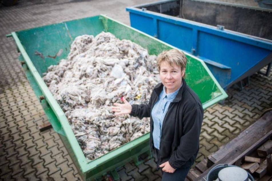 Dresdner Klärwerk erstickt am Müll!