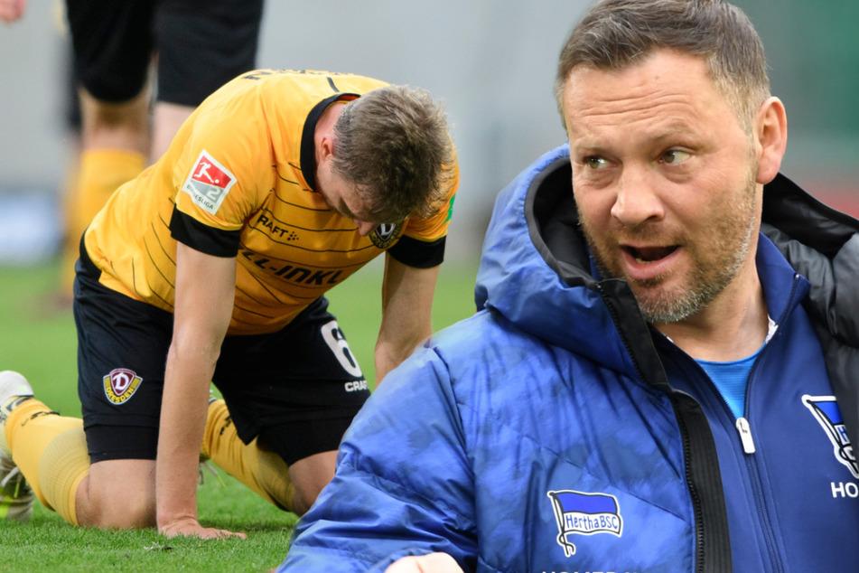 Hertha-Trainer Pal Dardai (r, 45) hat nach der Corona-Infektion nur leichte Symptome. Dynamo Dresden, hier am Boden hockend Marco Hartmann (33), musste ebenfalls mitten im Abstiegskampf kurz vor dem Re-Start in Quarantäne.